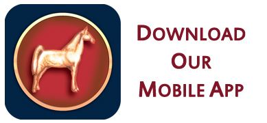 Download the Jackson County Mobile App